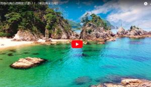 海水浴の動画